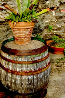 A potted plant and rusty barrel whisper words to passerby. April 2015. - Monterosso Al Mare, Italy